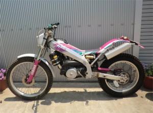 tyz250-1s